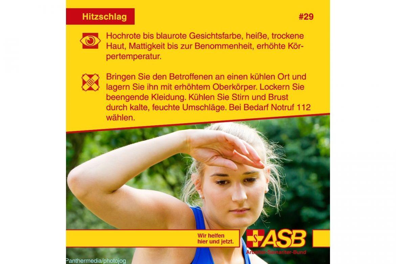 EH T 29.jpg